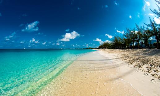 Cayman Webinar 517 x 311